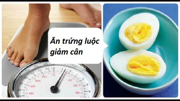 ăn nhiều trứng luộc có giảm cân không, ăn trứng luộc có giảm béo, ăn trứng luộc có giảm béo không, ăn trứng luộc có giảm cân, ăn trứng luộc có giảm cân được không, ăn trứng luộc có giảm cân k, ăn trứng luộc có giảm cân không, ăn trứng luộc có giảm cân ko, ăn trứng luộc có giúp giảm cân, ăn trứng luộc có tác dụng giảm cân không, có nên ăn trứng luộc để giảm cân, giảm cân bằng trứng luộc, giảm cân bằng trứng luộc có tốt không, giảm cân trứng luộc, trứng gà luộc có giảm cân k, trứng gà luộc có giảm cân không, trứng gà luộc có giúp giảm cân không, trứng gà luộc có tác dụng giảm cân không, trứng gà luộc có tốt cho giảm cân, trứng giảm cân, trứng luộc có giảm cân hay không, trứng luộc có giảm cân không, trứng luộc có giảm cân ko, trứng luộc có giúp giảm cân, trứng luộc có giúp giảm cân không, trứng luộc có thể giảm cân không, trứng luộc giảm cân, trứng luộc giảm cân hiệu quả, trứng luộc giảm cân như thế nào