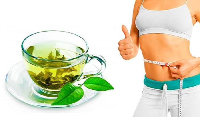SỰ THẬT Uống lá trà xanh tươi có giảm cân không?
