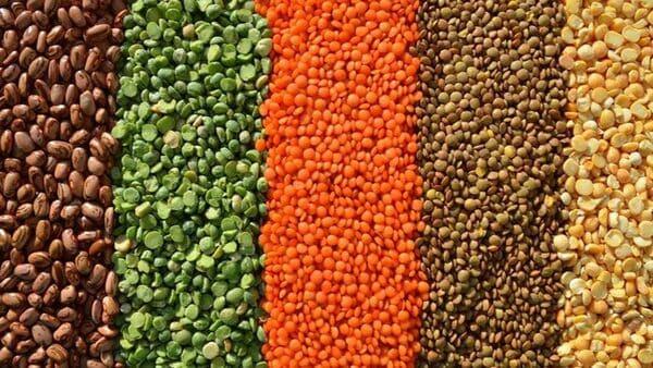Đậu lăng là một trong những thành phần chứa trong bột ngũ cốc giảm cân Tuệ Minh