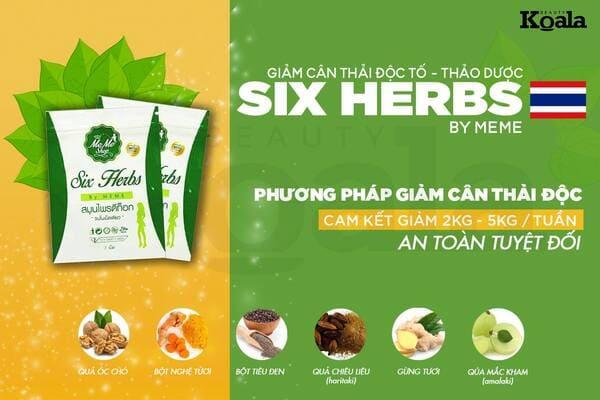 Sử dụng thuốc giảm cân Six Herbs theo chỉ dẫn của chuyên gia giúp bạn đạt hiệu quả nhanh chóng